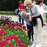 Besucherinnen im Park