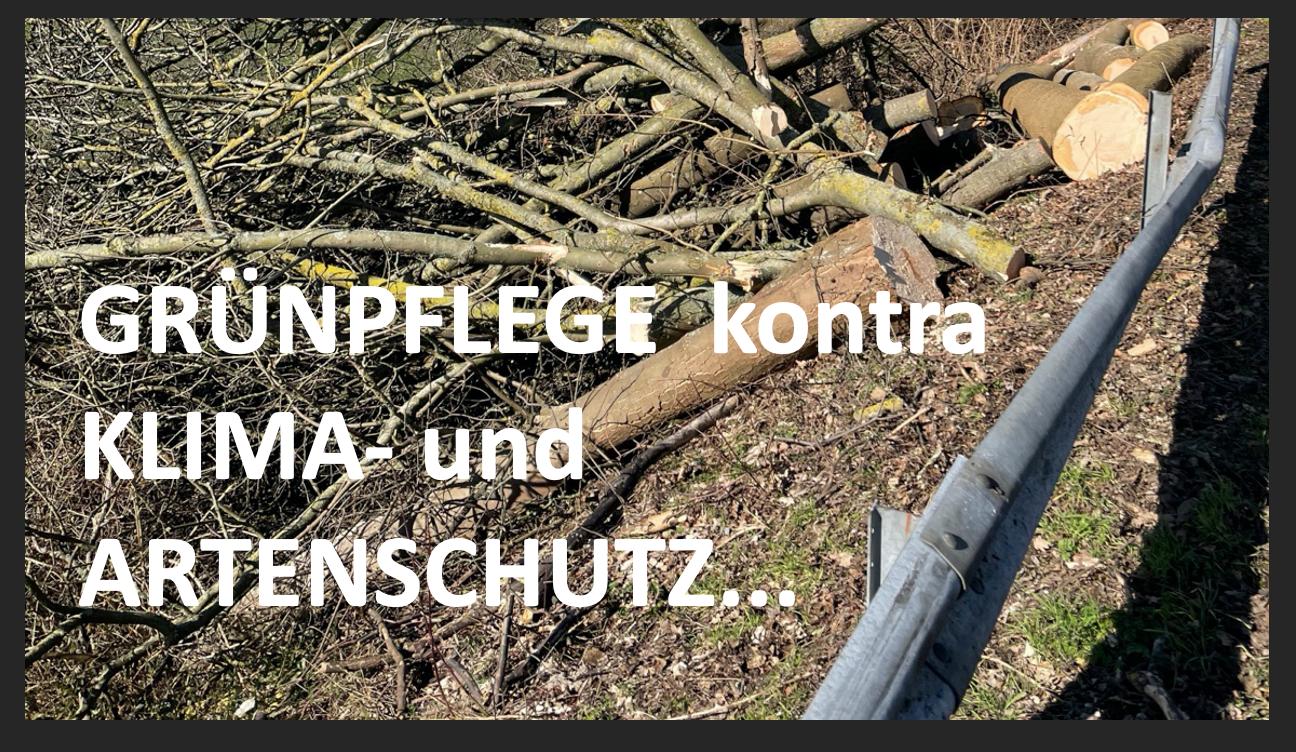 Straßen NRW: Stark überzogene Maßnahmen stehen für Unverhältnismäßigkeit